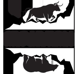 NTEU Chapter 293